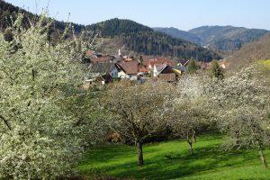 Der Oberkircher Brennersteig