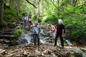 Über den Quellenpfad zum Wurstberg